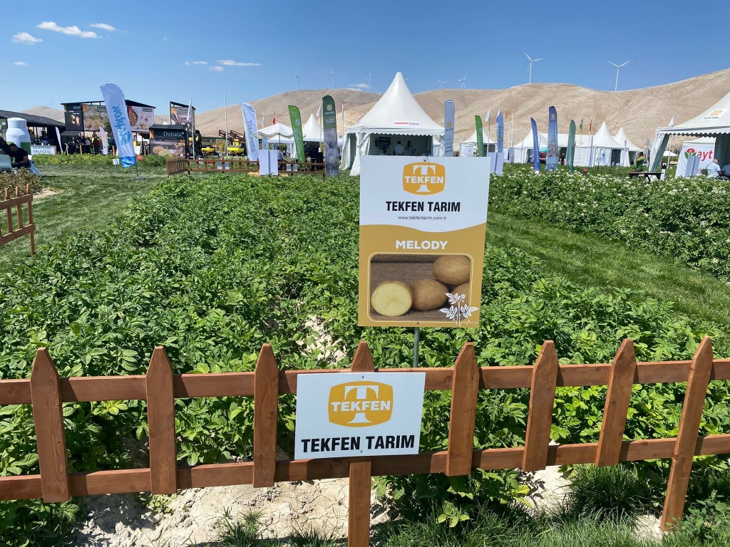 High-yielding and high-quality potato seeds of Tekfen Agri made a strong impression at the fair